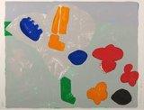 Cees Dolk - Tulpen en zo 6 - 75 x 95 cm - zeefdruk op papier - ingelijst