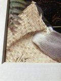 Patricia Steur - Jada - 85 x 68 cm -kleurenfoto (vintage print) - luxe ingelijst