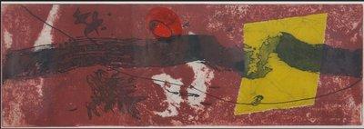 Duck Sung Kang - zonder titel IV - kleurenets op papier - 48 x 94 cm - ingelijst