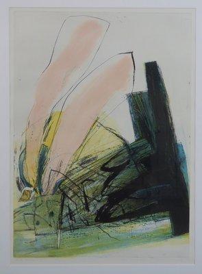 Hans Vredegoor - Boite Magique I - 91 x 66 cm - Ets op papier - aluminium ingelijst