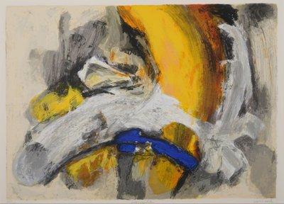 Hans van Horck - Perception - 65 x 80 cm - Zeefdruk op papier, achter passe-partout