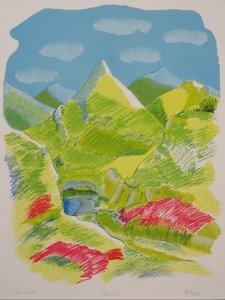 Amy Zillweger - Val da cam - 65 x 50 cm - litho op papier