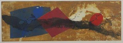 Duck Sung Kang - zonder titel III - kleurenets op papier - 48 x 94 cm - ingelijst